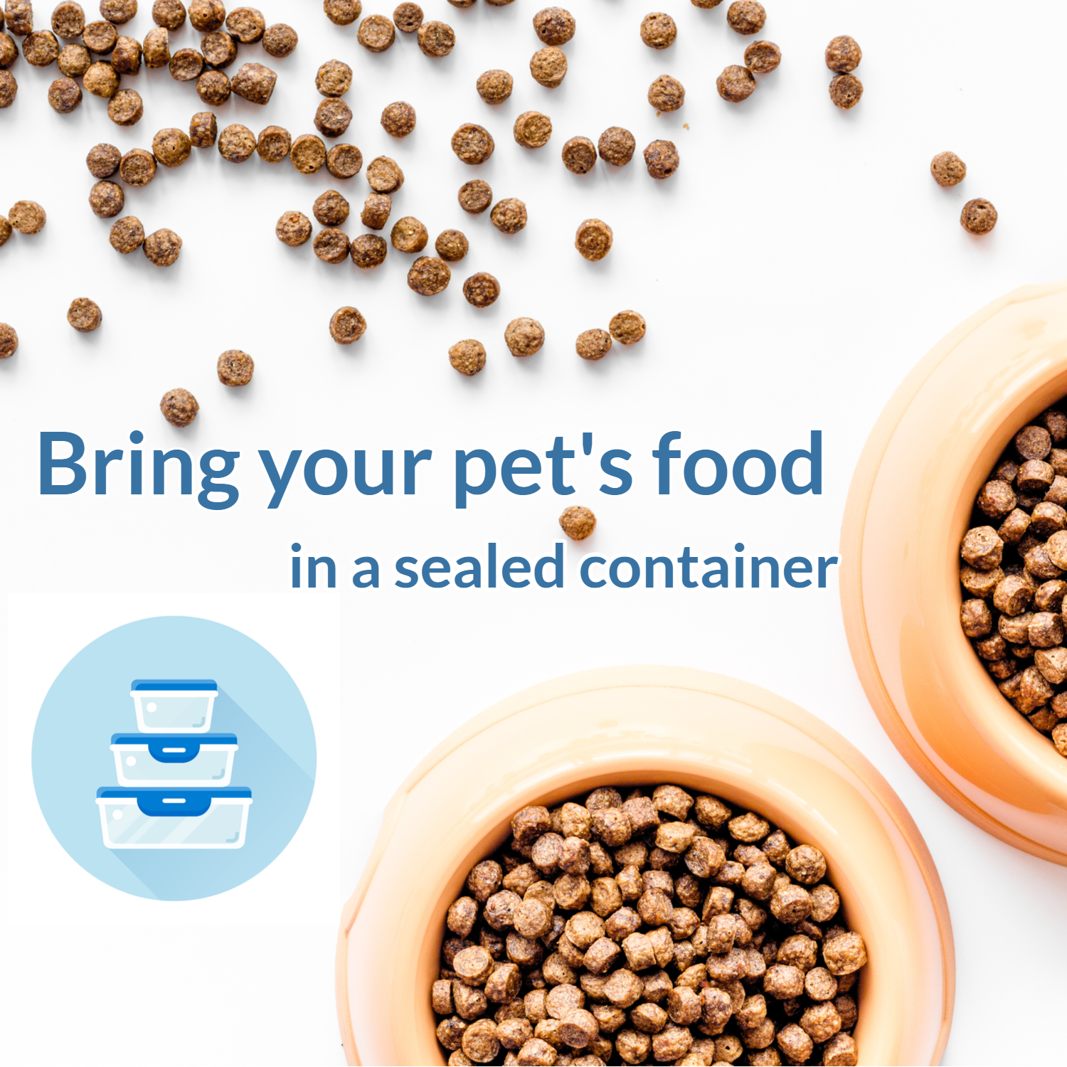 Bring Your Dog's Food for Dog Boarding